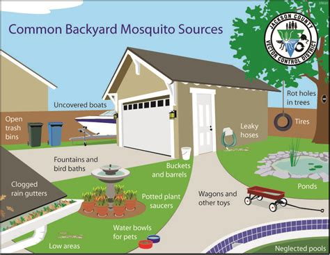 how to prevent mosquitoes in backyard mosquitoes in backyard how to control outdoor goods