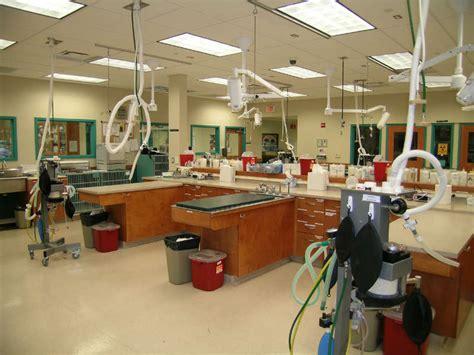 mt comfort animal hospital virtual tour red bank veterinary hospital