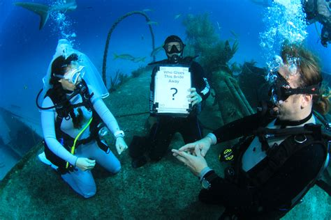 Wedding Underwater underwater wedding travelling monkeys marriage and