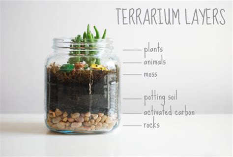 Interior Design For Bathrooms by Terrariums In Interior Design