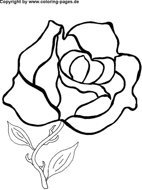 coloring pages of flowers free free flower coloring pages flower coloring page