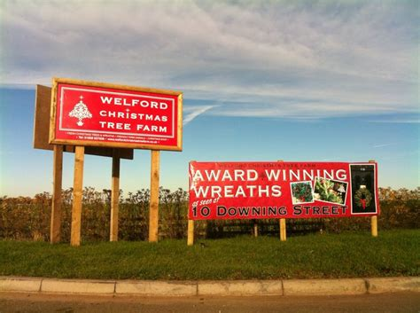 17 best images about welford christmas tree farm on