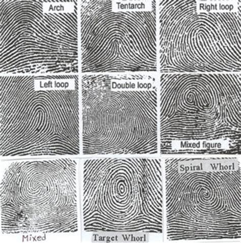 pattern types of fingerprints fingerprints reading 1