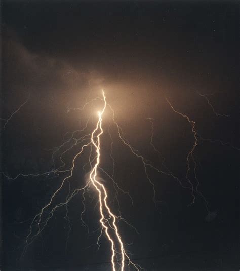 lighting images acct philly urges pet safety during thunderstorms and