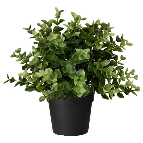 potted plants artificial flowers artificial plants ikea