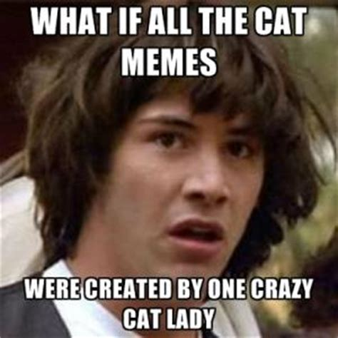Crazy Lady Meme - cat lady meme kappit