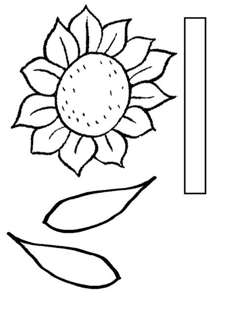 sunflower template printable nami yolo seeds of