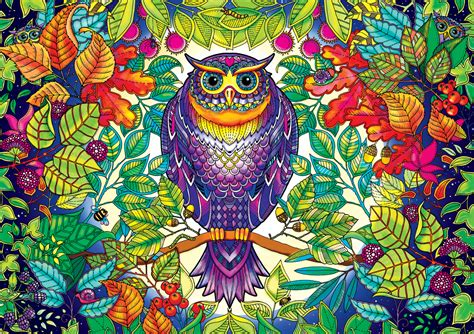 secret garden coloring book owl forest owl jigsaw puzzle puzzlewarehouse