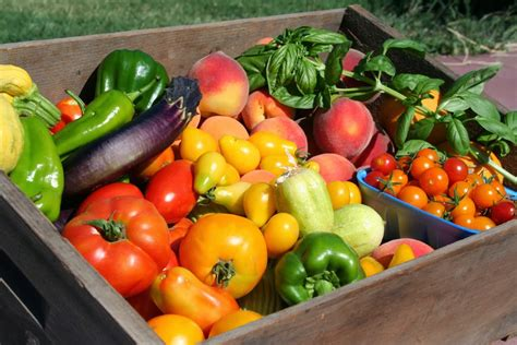 s w vegetables fruit and vegetables for growing in october the garden of