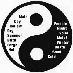Was Bedeutet Yin Und Yang by Understanding Yin And Yang I The Theory Towards Better