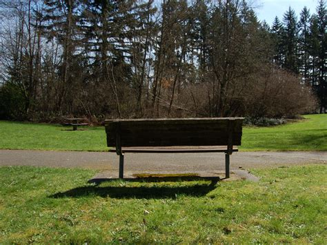 a park bench park bench with tree grove by happeningstock on deviantart