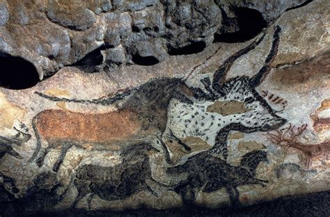 Deer Wall Murals stone age cave paintings cave paintings facts dk find out
