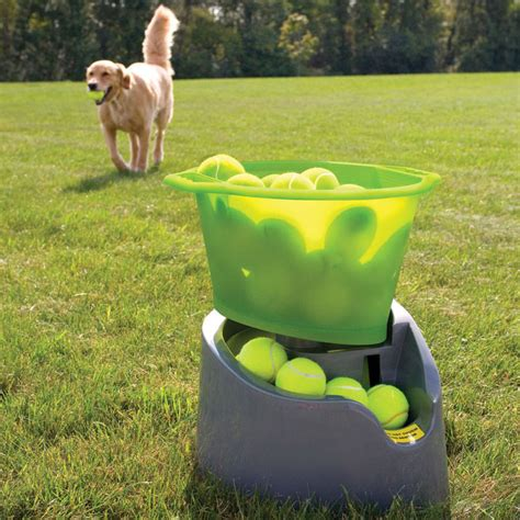 tennis thrower for dogs godoggo remote fetch automatic tennis launcher for dogs the green