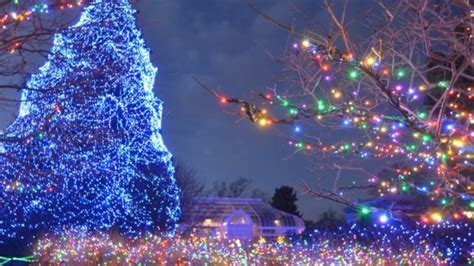 Lights Before Christmas At Toledo Zoo Begins Friday Wnwo Toledo Lights Before