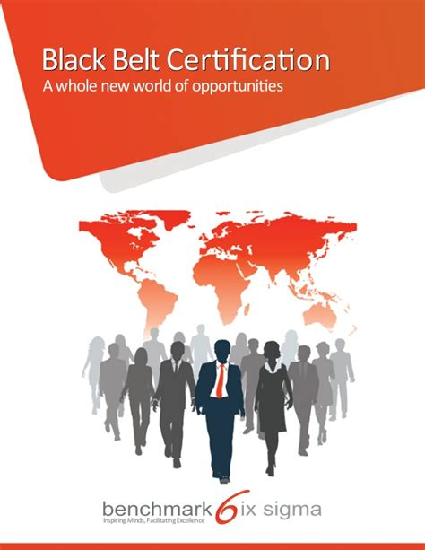 benchmark six sigma black belt brochure