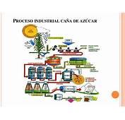Proceso Industrial Ca&241a De Azucar En Colombia