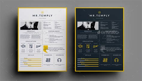 Resume Templates For Visual Artists 7 striking print resume templates for visual artists