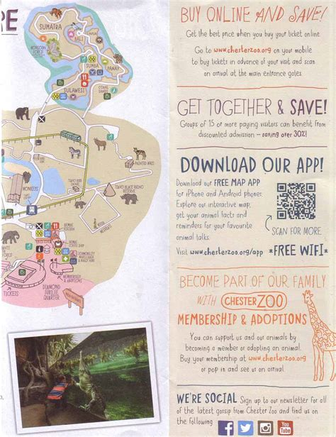 discount vouchers chester zoo chestertourist com chester zoo 4