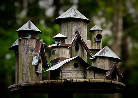 birdhouses a little bit of nonsense