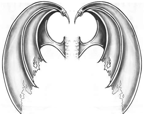 dragon wings tattoo wing drawings images