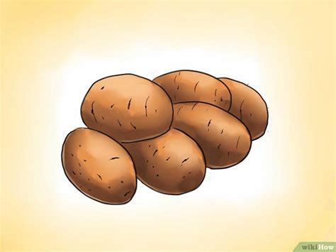 piantare patate in vaso come piantare le patate nei vasi 24 passaggi