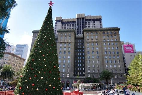 christmas tree lots in san franciso decorations san francisco 2017 www indiepedia org