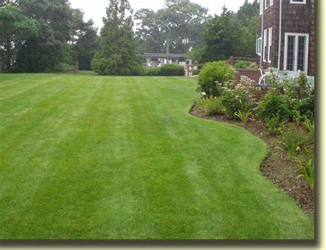 landscaping 101 lawn maintenance tips landscape garden