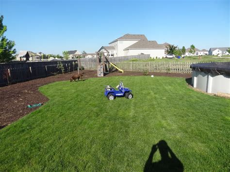 backyard privacy landscaping ideas landscaping ideas for backyard privacy cont