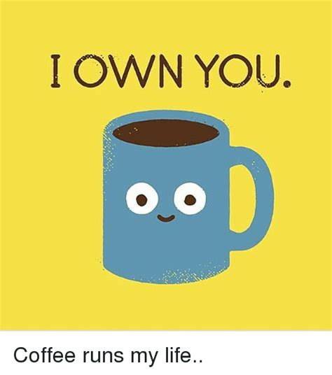 Funny Coffee Memes - i own you coffee runs my life funny meme on sizzle