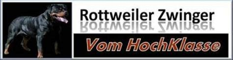 rottweiler health foundation vom hochklasse kennel rottweiler links high class rottweilers