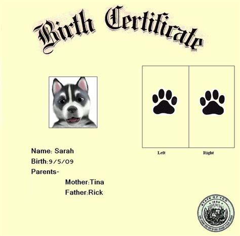 puppy birth certificate template free 1000 images about puppy on care adoption