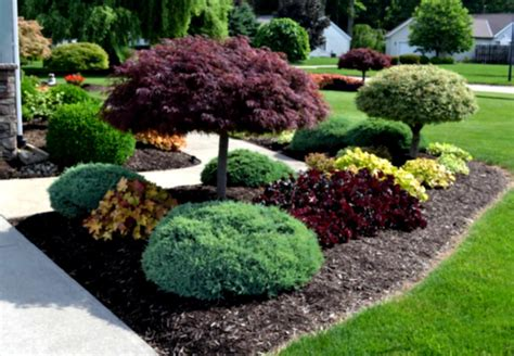 Front Garden Bed Ideas Flower Beds Front Yard