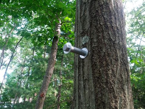 Tree house bolts options best house design best ideas tree house bolts