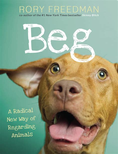 how to a to beg book review beg chic vegan