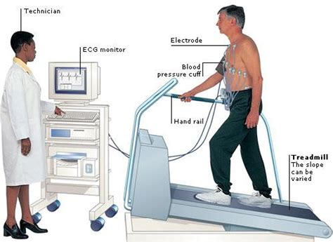 the stress test how pressure can make you stronger and sharper books exercise stress test advanced cardio services