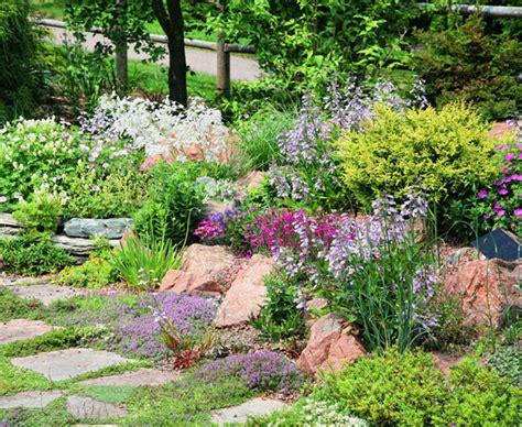 Steingarten Bilder mit etwas how steingarten anlegen bauen de