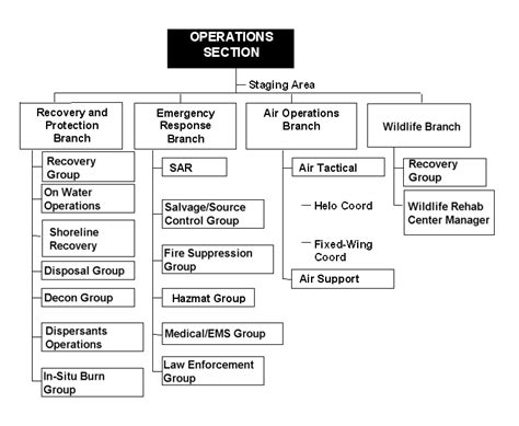 operations section chief ics