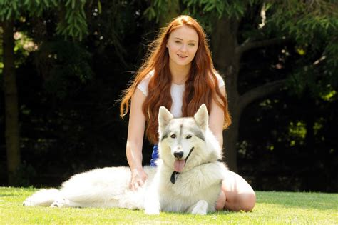 direwolf puppies turner zunni of thrones photo 35320313 fanpop