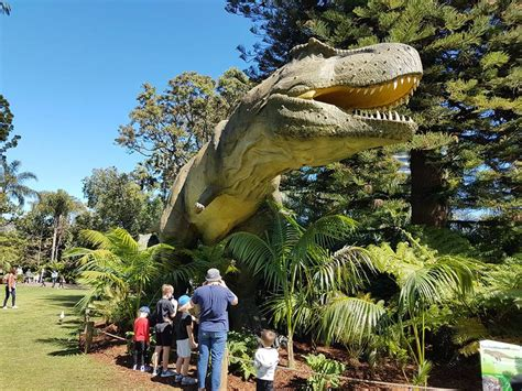 zoorassic park  perth zoo buggybuddys guide  perth