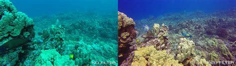 Gopro 5 Underwater Housing Diving Snorkeling Filter gopro filter hero4