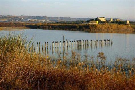 va geländerteile la riserva naturale orientata biviere di gela guida sicilia