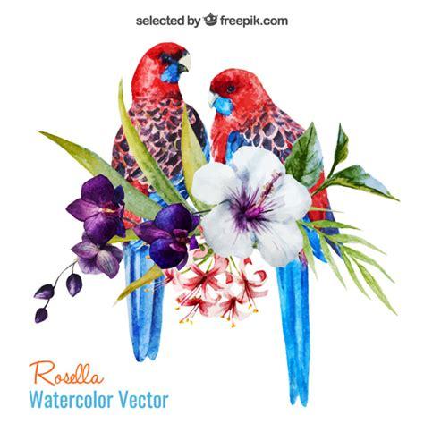 perroquets et des fleurs aquarelle t 233 l 233 charger des
