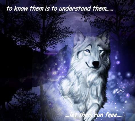 google images wolf wolves google search wolves pinterest