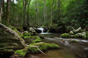 The Roaring Fork Roaring Fork Smoky Mountains National Park By Tt83x On