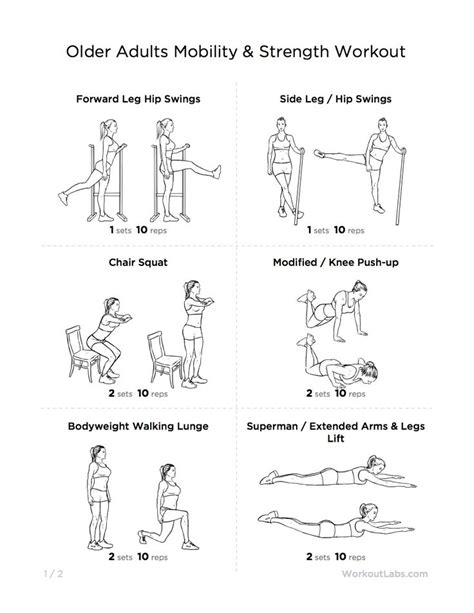 printable exercise program for seniors 17 best images about fitness tips for elderly on pinterest