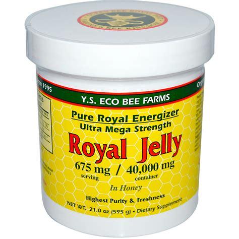Royal Jelly Honey y s eco bee farms royal jelly in honey 675 mg 21 0 oz