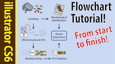 flowchart poster illustrator cs6 tutorial flowcharts for beginners