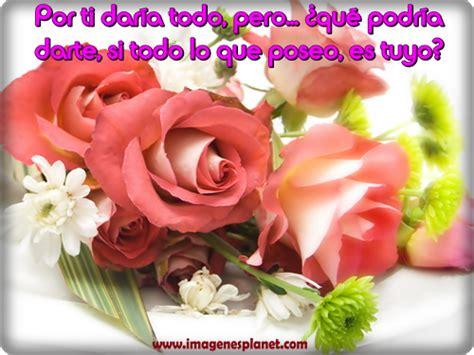 imagenes de rosas rojas para mi amor apexwallpaperscom im 225 genes hermosas con flores y dedicatorias de amor para