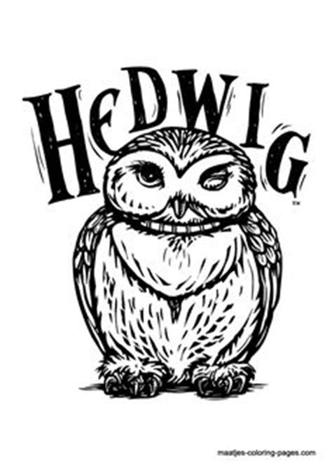 harry potter coloring book hedwig hp on hedwig harry potter harry potter and