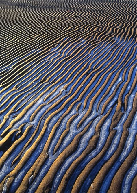 texture pattern wave 161 best patterns in nature images on pinterest beleza